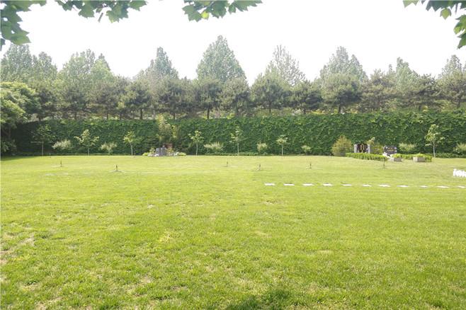 灵山宝塔墓地陵园,不错的选择