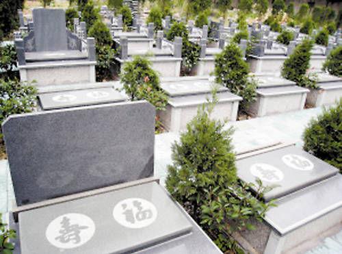 北京丰台绿叶墓地怎么样?什么样的墓位比较好呢?