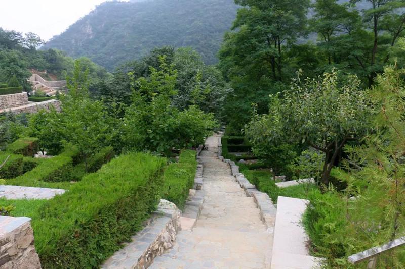 北京哪里树葬  怎样才能找到合适的树葬场所