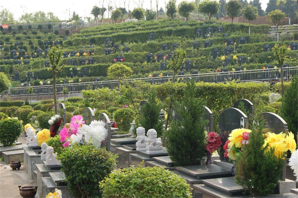 北京九公山树葬公墓  选购墓地时的流程怎么样