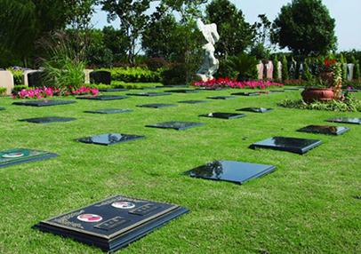 北京哪个陵园有树葬?这些陵园环境怎么样?