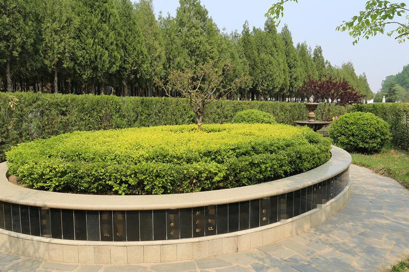 北京华侨公墓树葬环境怎么样?陵园好不好?