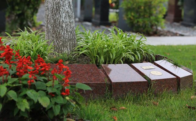 北京生态安葬树葬怎么收费?生态安葬树葬是什么
